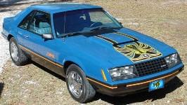 1979 ford mustang cobra body styles data explorer. Black Bedroom Furniture Sets. Home Design Ideas