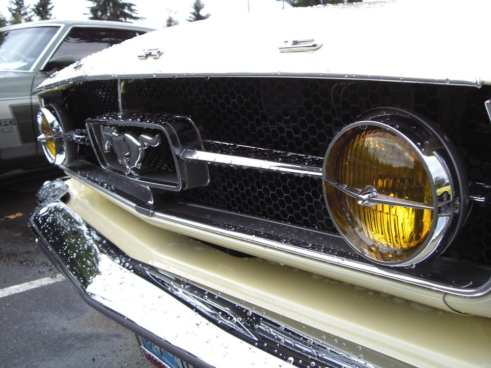 GT Front Grille and Fog Lamps