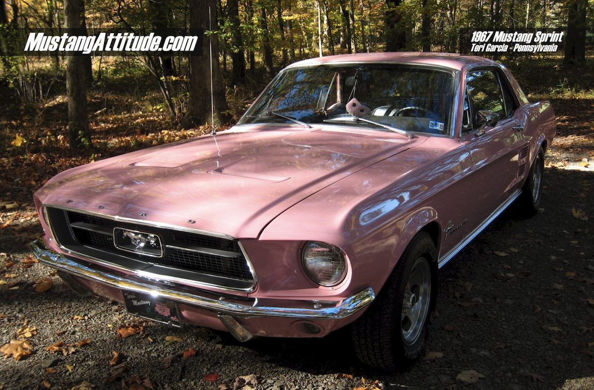Attitude Of The Month, 2011 February, Dusk Rose 1967 Mustang
