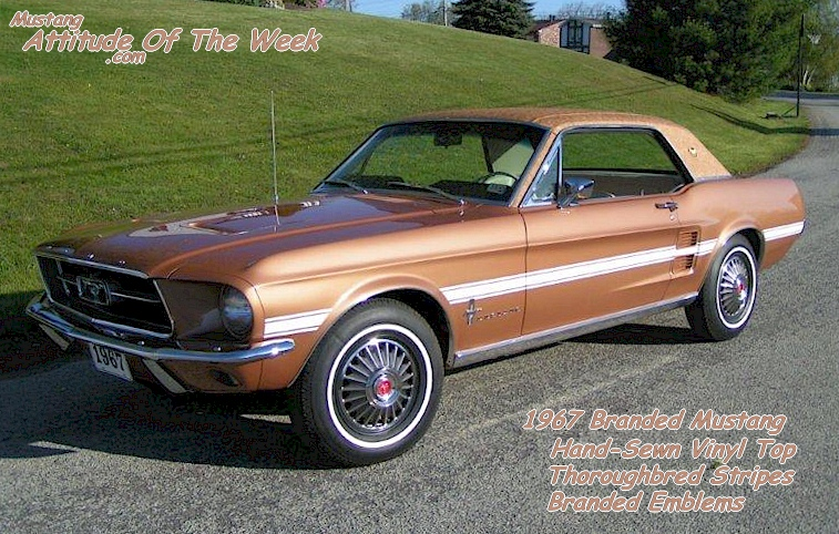 1967 Branded Mustang