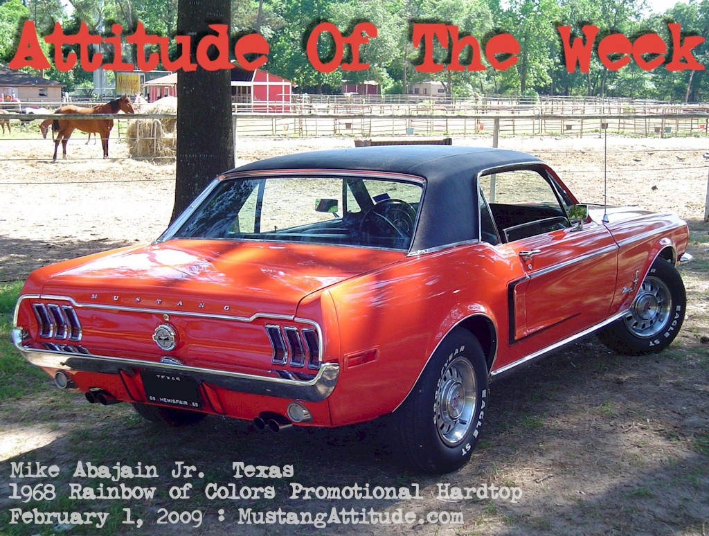 Flower Power Red Orange 1968 Rainbow of Colors Promotional Mustang Hardtop