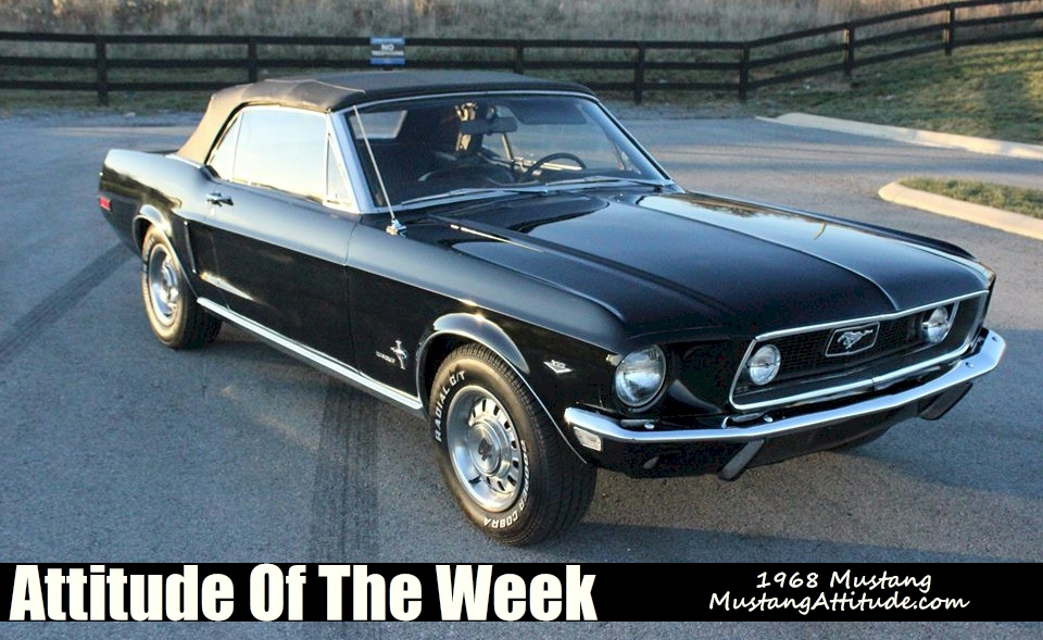 used 1964 1968 mustang convertables for sale in autos weblog. Black Bedroom Furniture Sets. Home Design Ideas