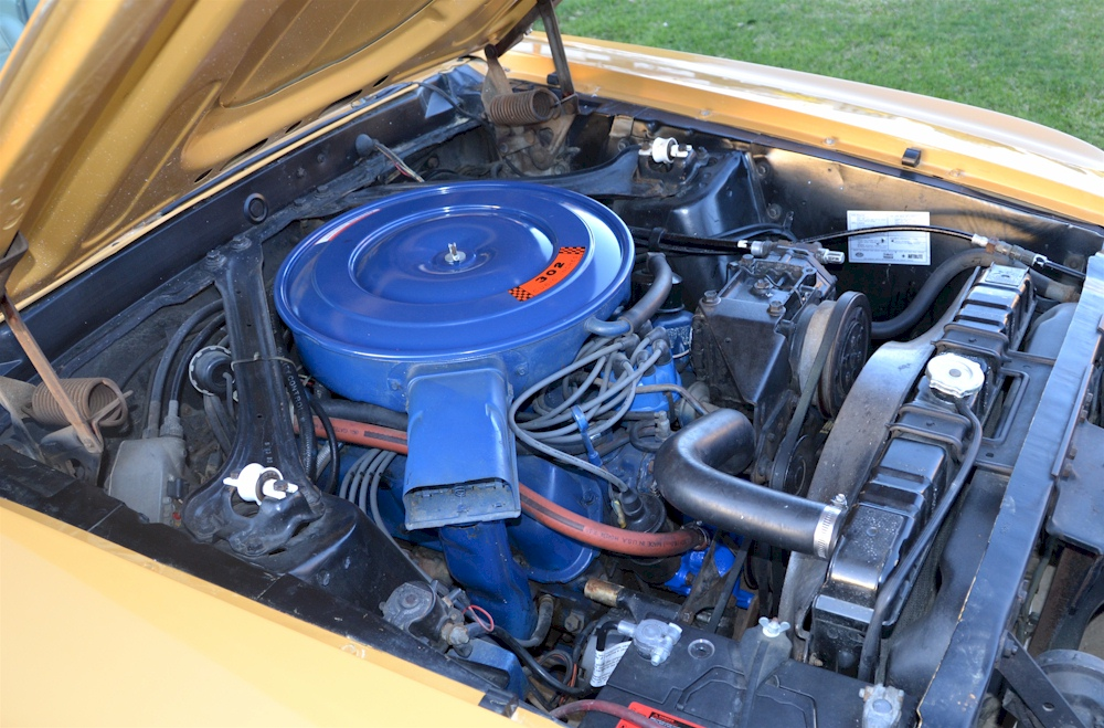1969 Mustang 302ci Engine