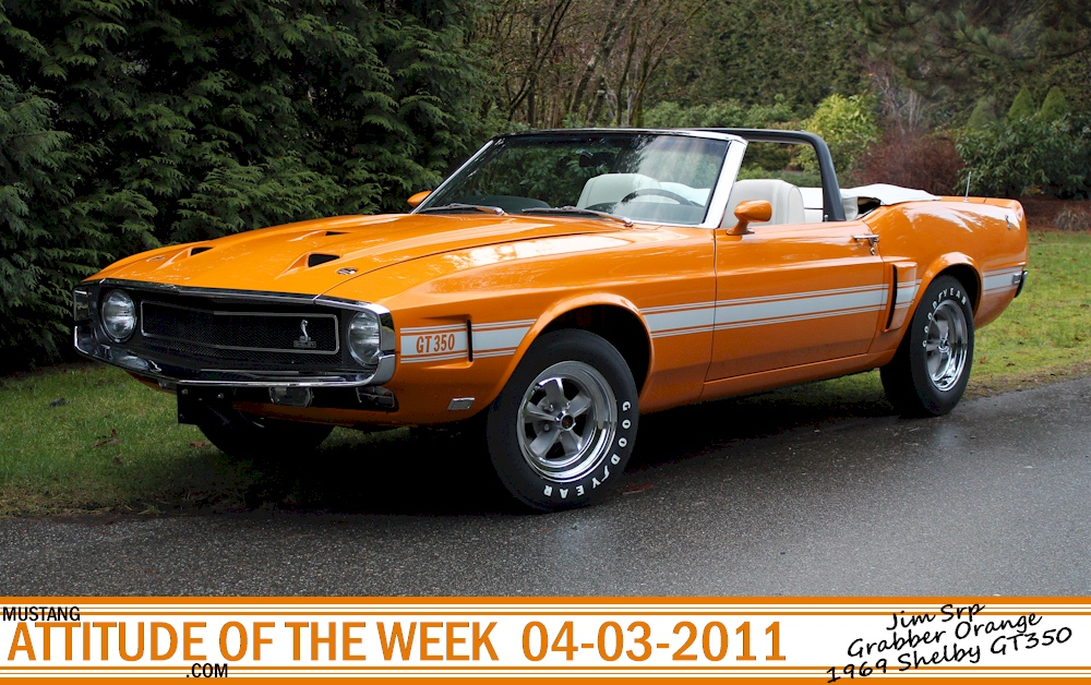 Grabber Orange 1969 Shelby GT350