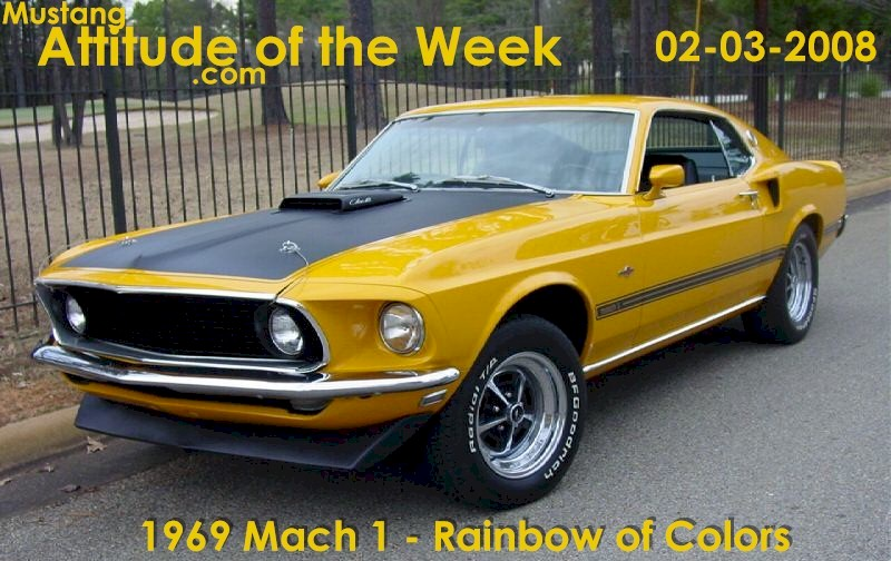 Special Order Yellow 1969 Mustang Mach 1 Fastback