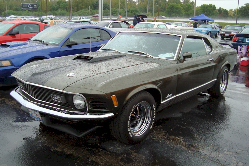 Dark Ivy Green 1970 Mach 1