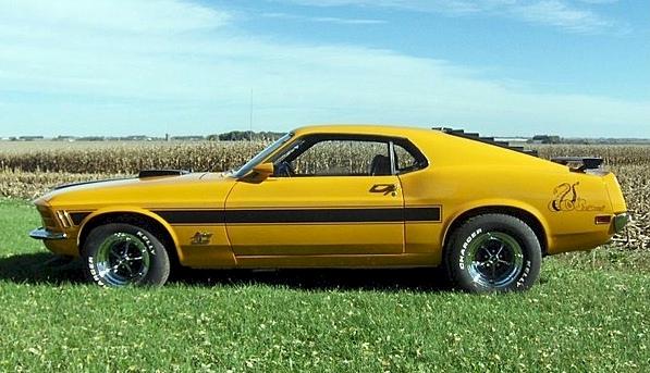 1970 Sidewinder Special Mustang