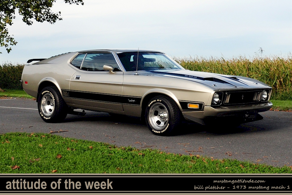 1973 ford mustang mach 1 horsepower. Black Bedroom Furniture Sets. Home Design Ideas