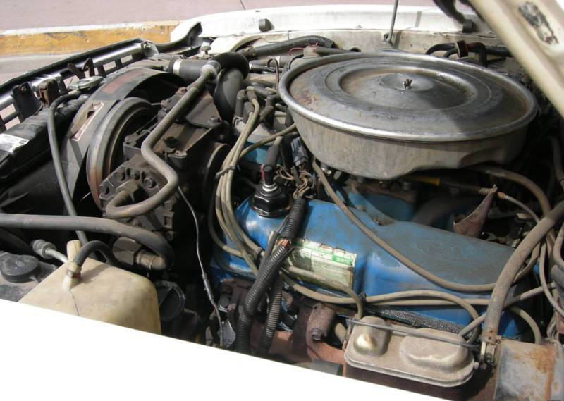 1978 Mustang F-code 302ci 5.0L V8 Engine