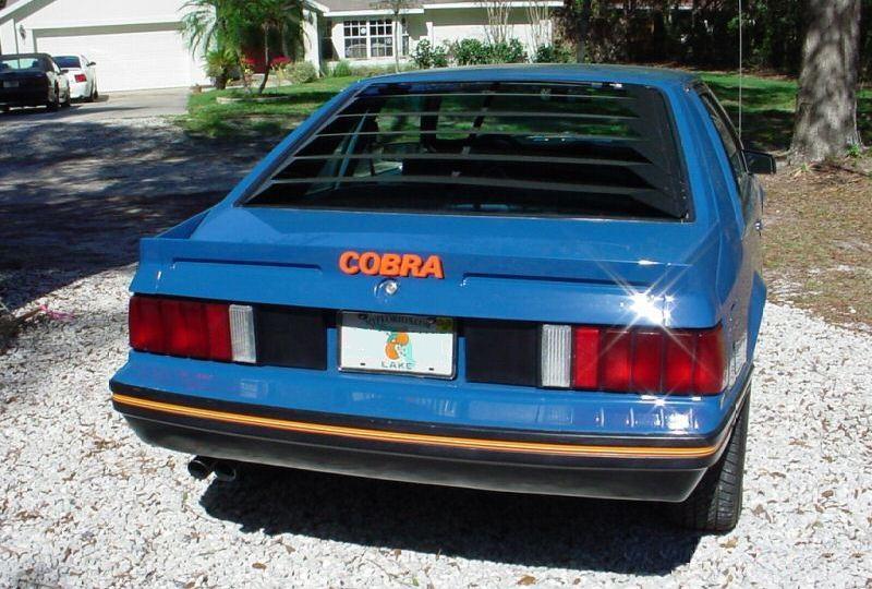 medium blue glow 1979 ford mustang cobra optioned hatchback photo detail. Black Bedroom Furniture Sets. Home Design Ideas