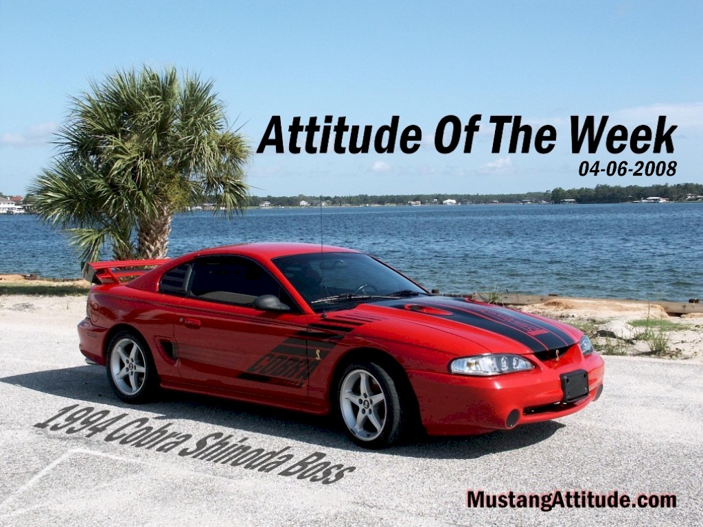 Rio Red 1994 Ford Mustang SVT Cobra Shinoda Coupe ...