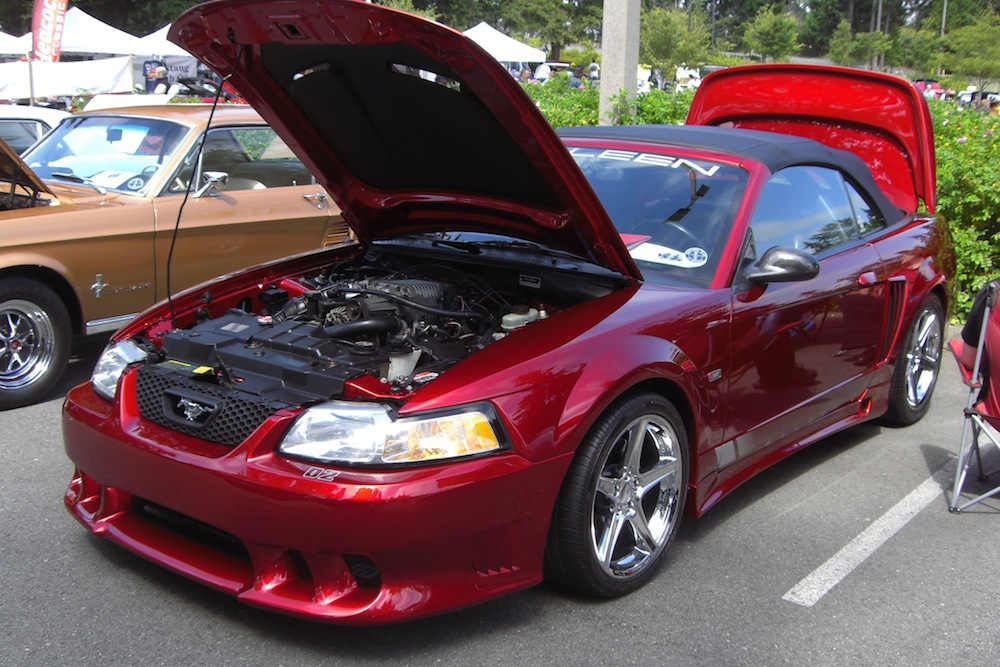 lizstick red 1999 saleen s281 sc ford mustang convertible photo detail. Black Bedroom Furniture Sets. Home Design Ideas