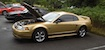 Sunburst Gold '00 Mustang GT Coupe