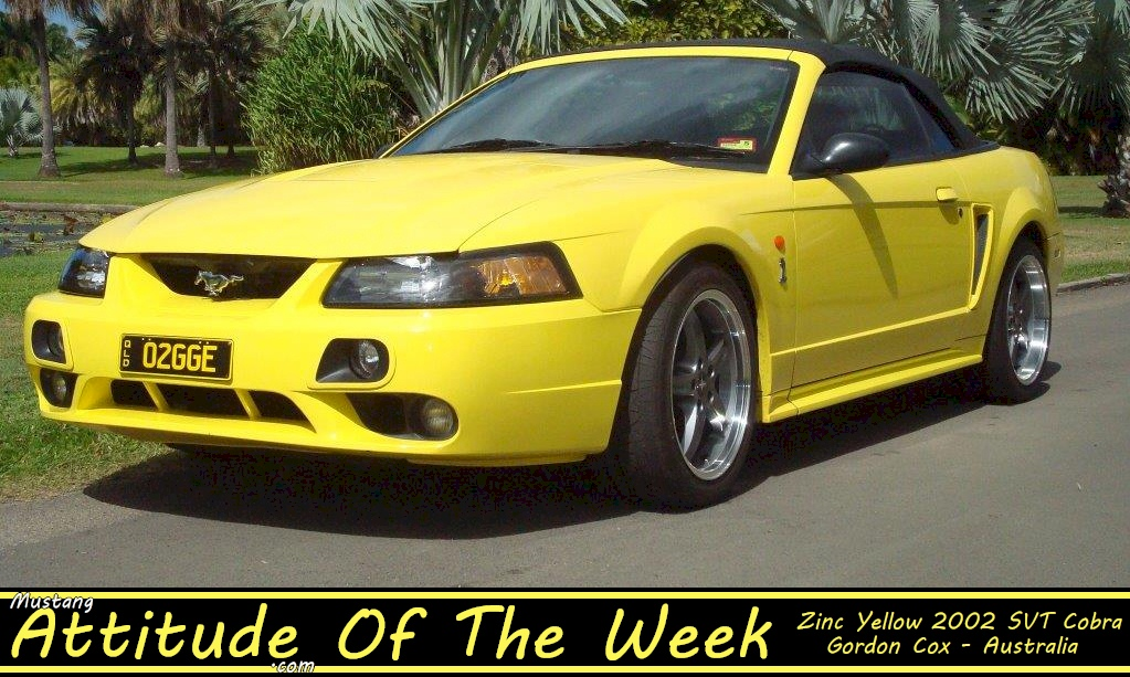 Zinc Yellow 2002 Cobra Convertible
