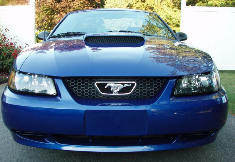 Sonic Blue 2003 Ford Mustang Coupe Mustangattitude Com