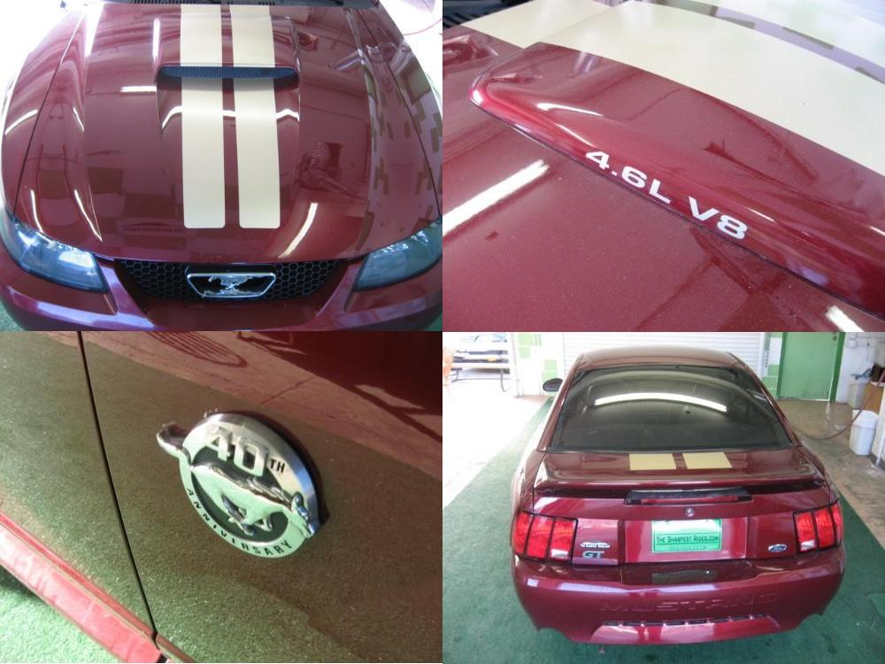 2004 ford mustang gt 40th anniversary   w245   dallas 2013.