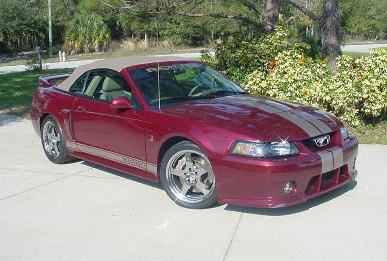 crimson red 2004 roush 40th anniversary edition ford mustang convertible. Black Bedroom Furniture Sets. Home Design Ideas