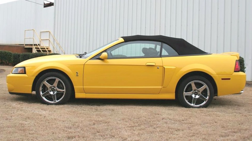 Black and yellow mustang 2004