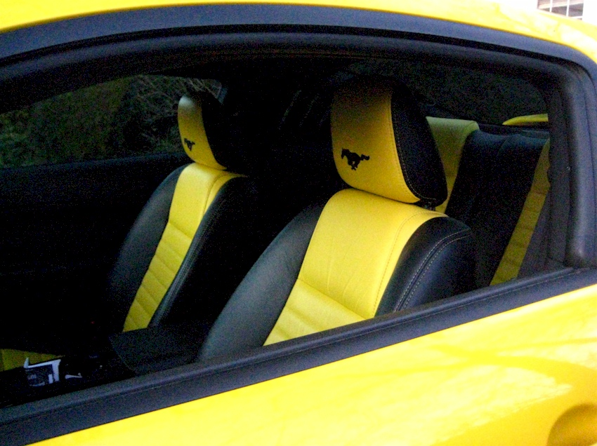 2010 Ford Mustang For Sale >> Screaming Yellow 2005 Ford Mustang Coupe - MustangAttitude ...