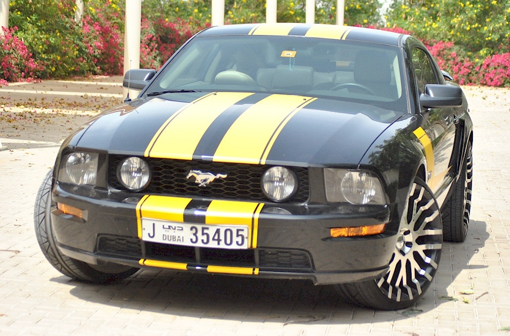 2005 Gt Options Package