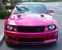 Molly Pop Pink 07 Saleen S281 Extreme Mustang Coupe