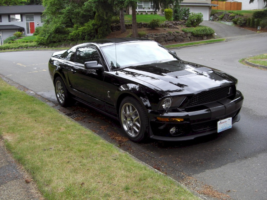 Black 2008 Shelby GT500 Coupe