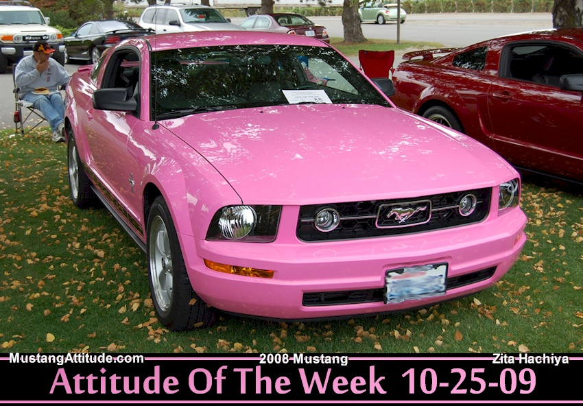 Pink 2008 Mustang Coupe