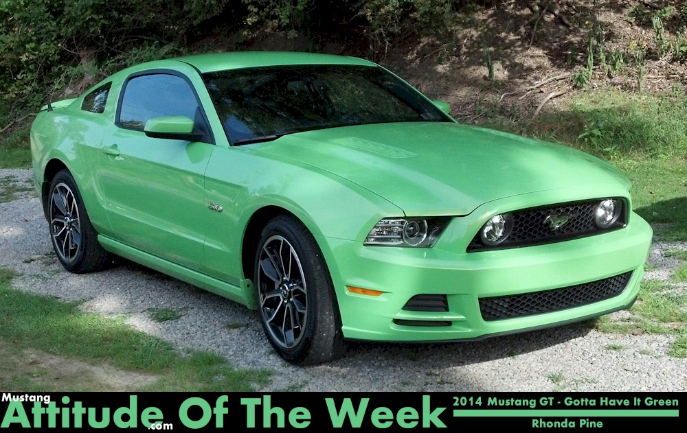 Gotta Have it Green 2014 Mustang GT