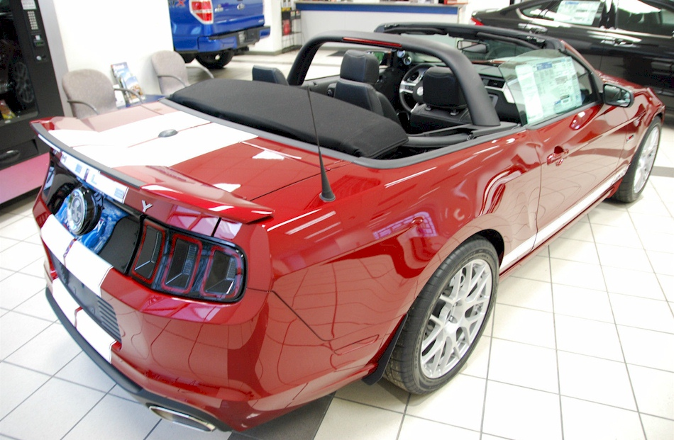 mustang ruby shelby convertible gt350 gt ford mustangattitude