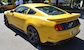 2015 Yellow Saleen 302 Black Label