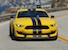 Triple Yellow 2016 Shelby GT350R Mustang