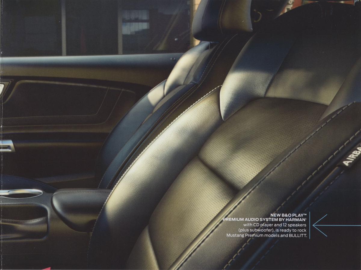 leather seat option